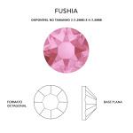 fushia 2