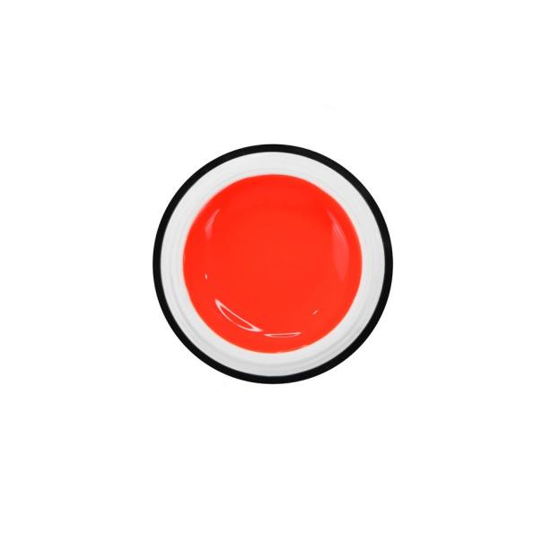 Easy Smoothie Orange 2