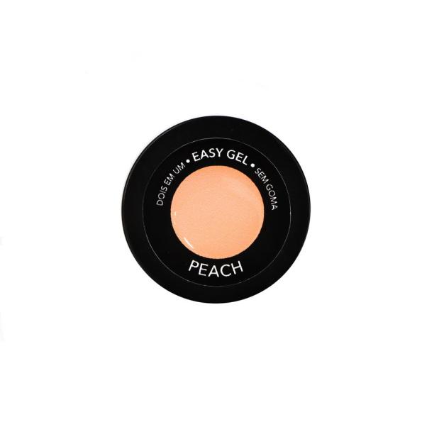 Easy Smoothie Peach 3
