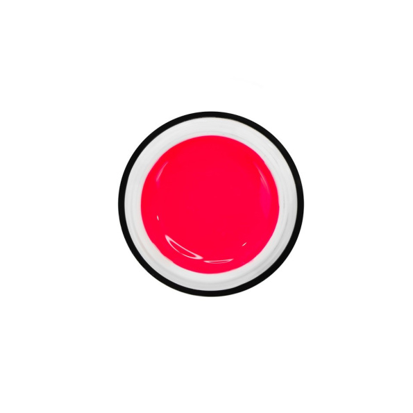 Easy Smoothie Watermelon 2